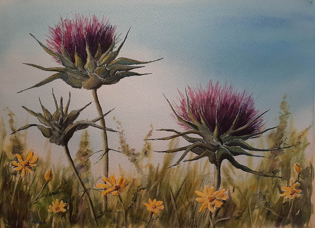 Thistles in a Springtime Field